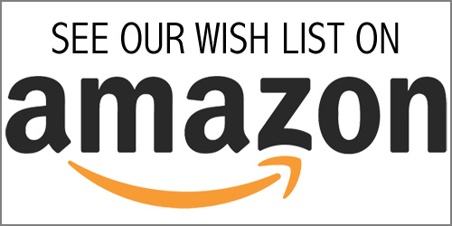 SEE OUR WISH LIST ON AMAZON